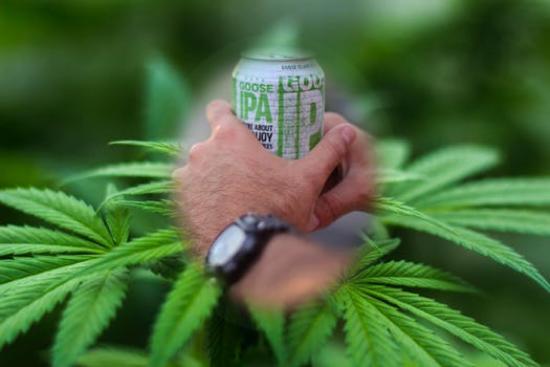 wine article Budweisers Exmarketing Chief Sees Weed As New Craft Beer