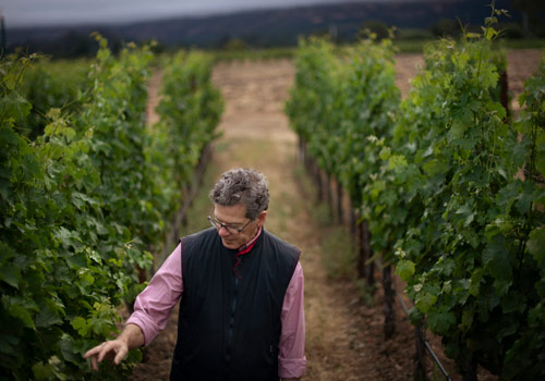 wine article Insider Interviews By David Furer  Presenting Paul Hobbs