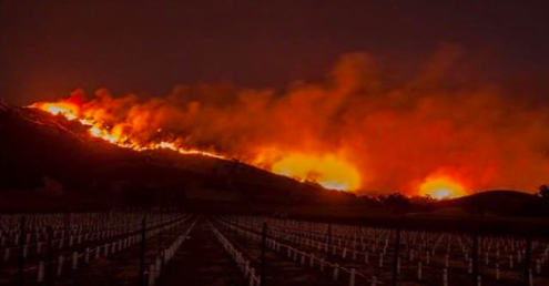 Napa and Sonoma wildfires destroy wineries bars and hotels many others threatened