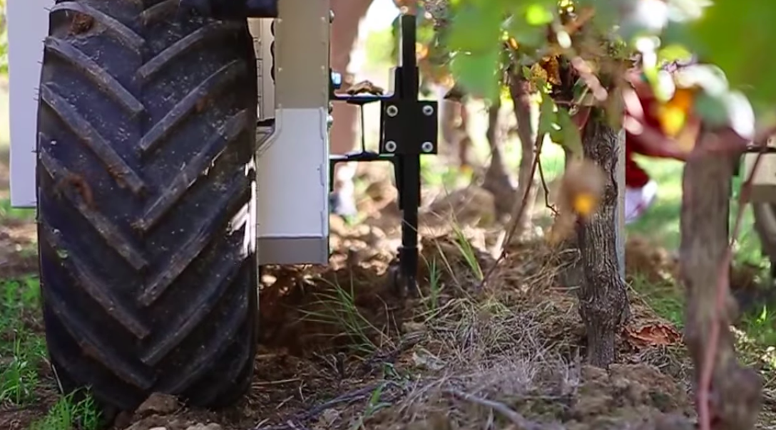 Bordeaux Robot vineyard worker impresses at Clerc Milon