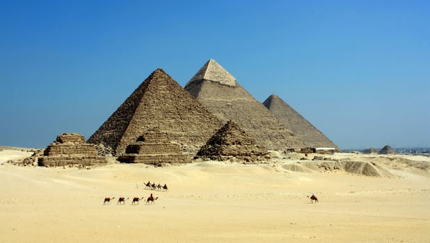 wine article 3200yearold Cheese Found In Egyptian Tomb